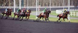 1200px-Course_trot_Vincennes
