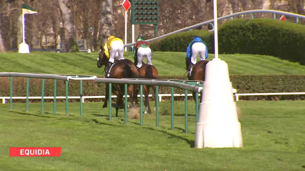 Prix Troytown 2019 (G3, Auteuil) : Storm of Saintly