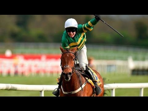 Novice Chase 2017 - Punchestown - Great Field