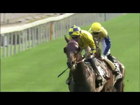 Queen Elizabeth II Cup 2016 - Sha Tin - Werther