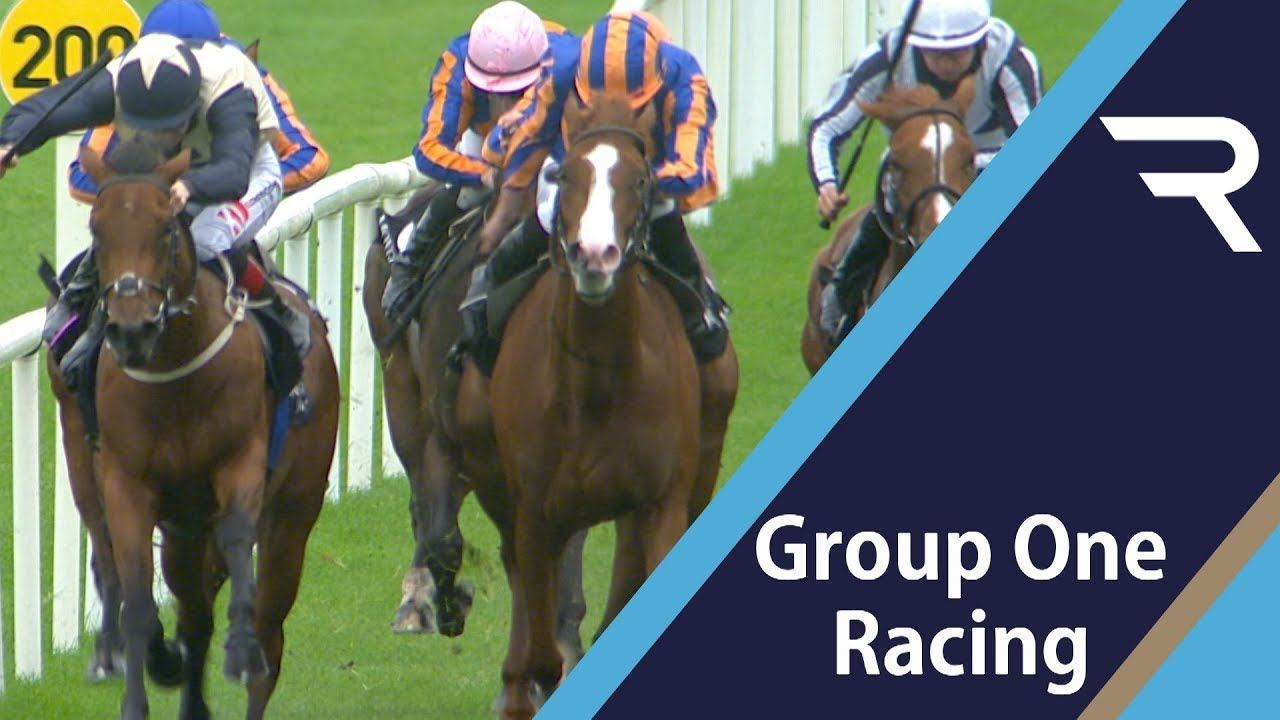 MOYGLARE STUD STAKES 2019 (Curragh) : Love