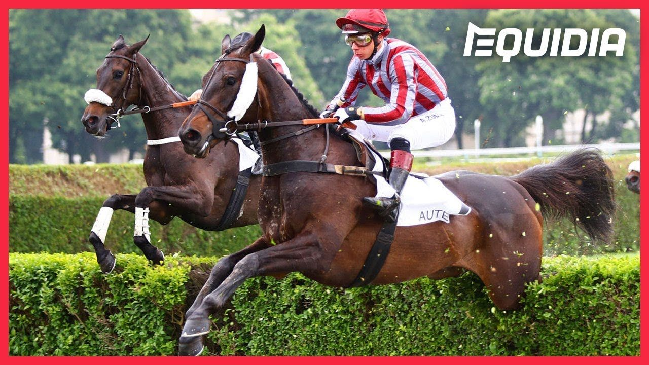 Prix The Fellow 2019 (Auteuil) : Figuero