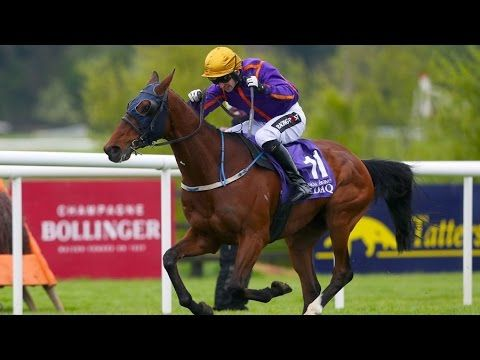 Punchestown Champion Hurdle 2017 - Wicklow Brave