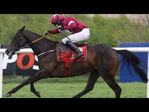 Mares Champion Hurdle 2017 - Punchestown - Apple's Jade